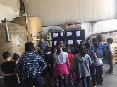 Scuola in visita Azienda Vitivinicola Casa Favot